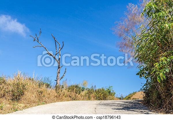 Road to the mountain - csp18796143