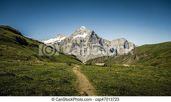Road to the mountain - csp47013723