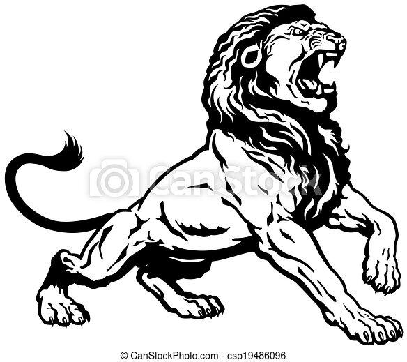 roaring lion black white - csp19486096