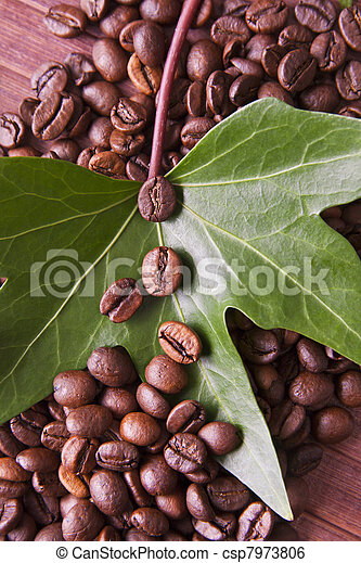 roasted coffee beans in the natural environment of the coffee industry - csp7973806