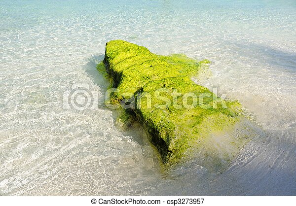 Rock en la playa - csp3273957