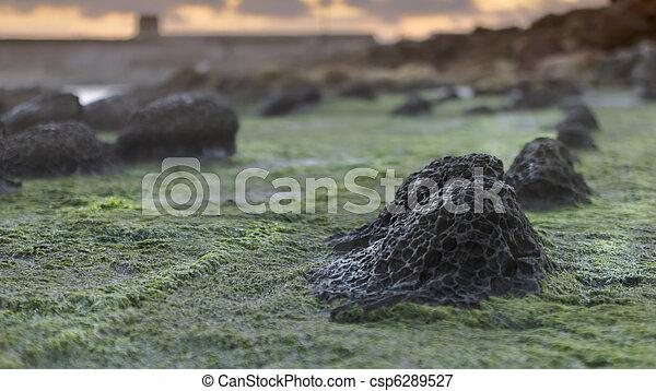 Piedras volcánicas de Ryder - csp6289527