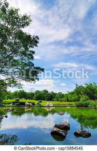 Rock in garden pond - csp15884545