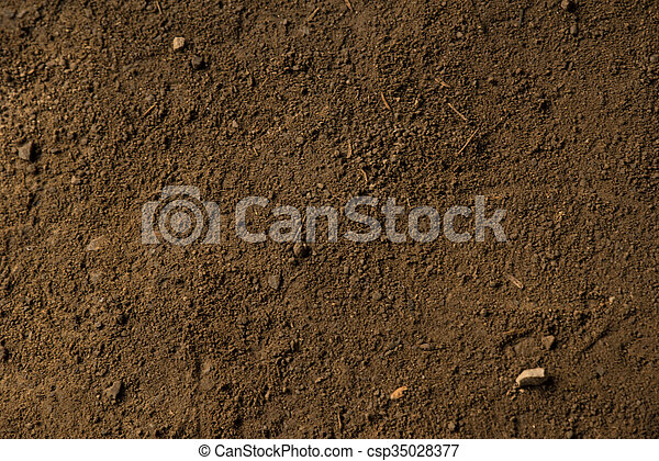 rock surface - csp35028377