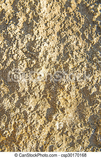 rock surface - csp30170168