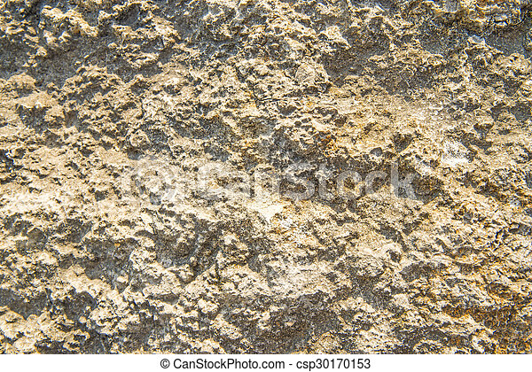 rock surface - csp30170153
