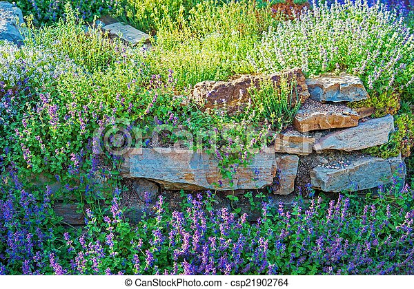 Rockery Garden Closeup - csp21902764