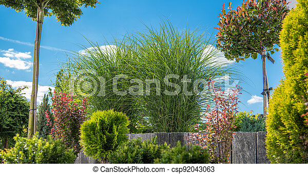 Rockery Garden Plants Summer Vegetation - csp92043063
