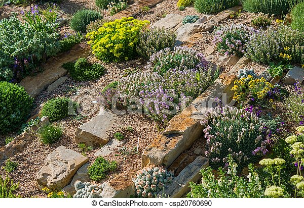 Rockery Garden - csp20760690