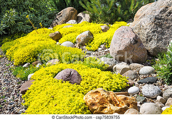 rockery rock garden - csp75839755