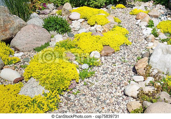 rockery rock garden - csp75839731