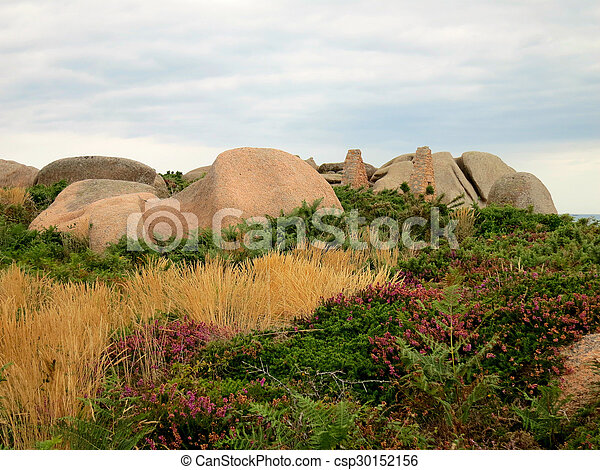 Rocks and plants at cote de granite rose, brittany, france stock ...