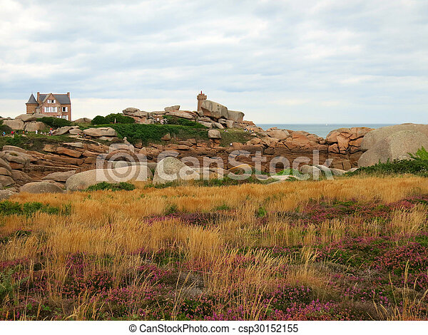 Rocks and plants at cote de granite rose, brittany france.... stock ...