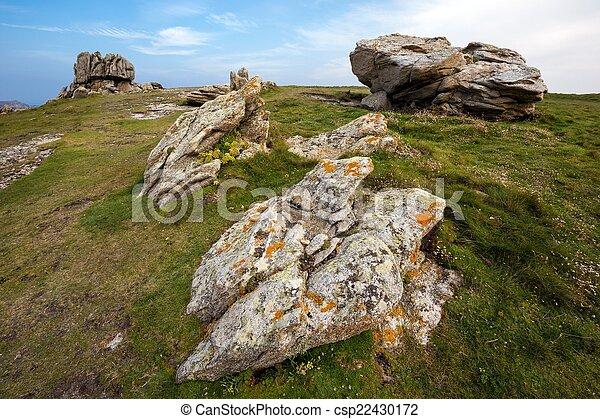 Rocky coastline and meadow - csp22430172