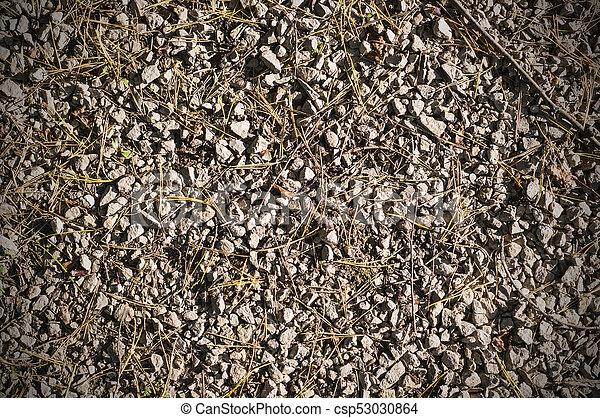 rocky ground texture background rocky ground texture at autumn
