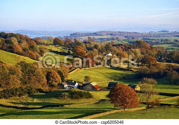 rodante, campo, otoño, inglés - csp6205046