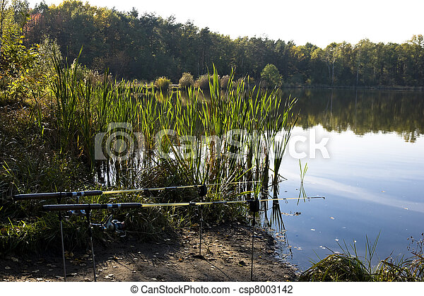 Rods on the water - csp8003142