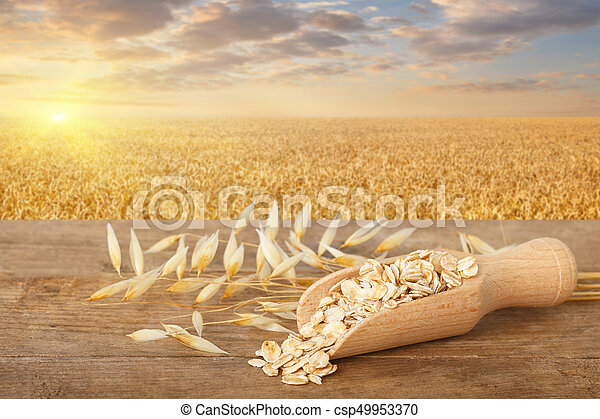 rolled oat flakes in scoop - csp49953370