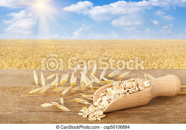 rolled oat flakes in scoop - csp50106884
