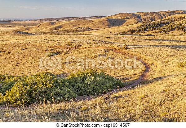 rolling prairie in Colorado - csp16314567