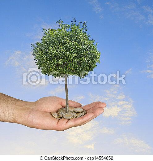 rolnictwo, lokata - csp14554652