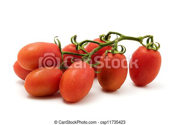 Roma Tomato - csp11735423