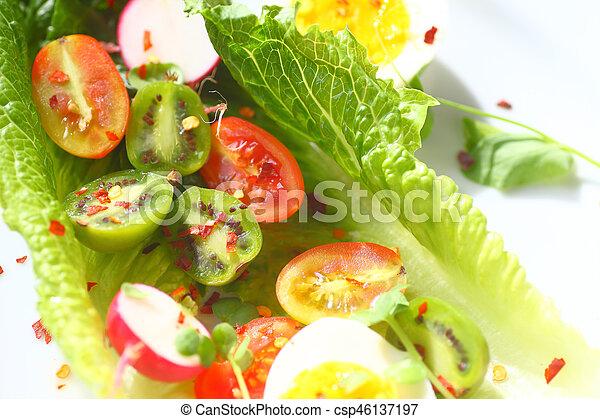 Romaine with radishes and tiny kiwi fruits - csp46137197