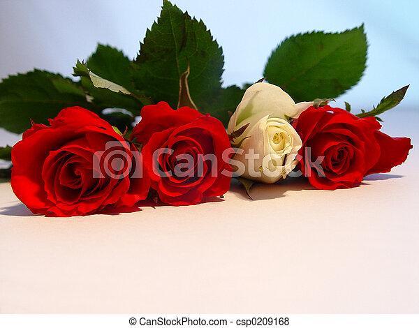 romance - csp0209168
