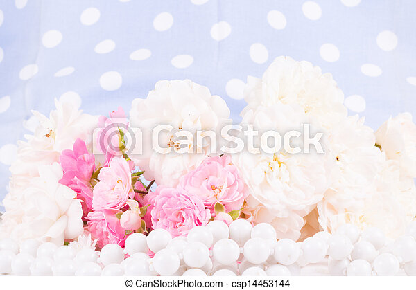romantic background with rose - csp14453144