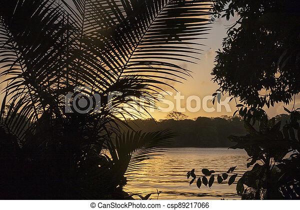romantic sunset at the beach in Tortugenero in Costa Rica - csp89217066