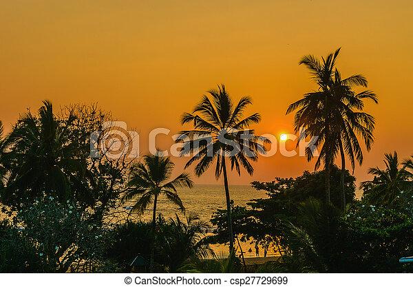 romantic sunset on caribbean beach with palms romantic yellow