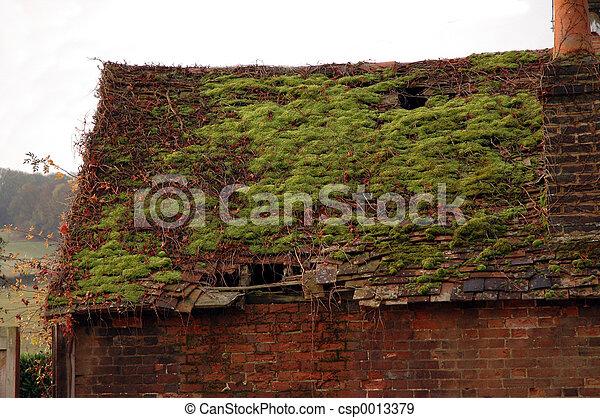 Roof - csp0013379