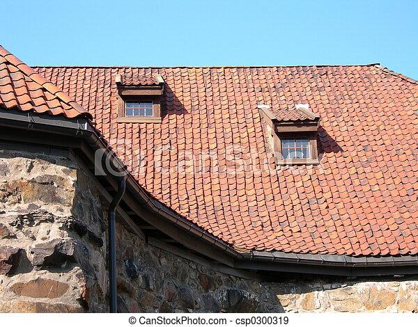 Roof - csp0300319