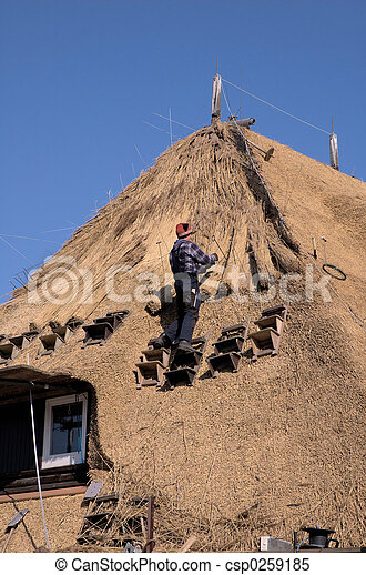 Roof thatching3 - csp0259185