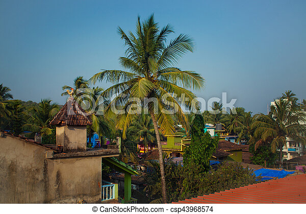 Roofs of houses and palm trees - csp43968574