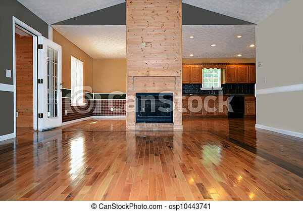 Room with Fireplace and Wood Floors - csp10443741