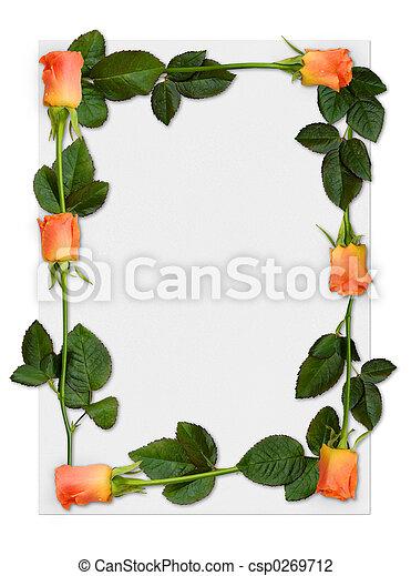 roos, frame, 2 - csp0269712