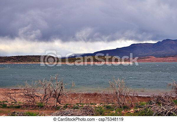 Roosevelt Lake Arizona - csp75348119