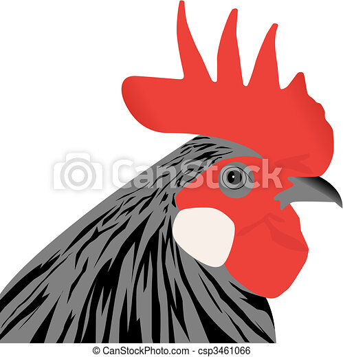 vector rooster head illustration on white background clip art vector rh canstockphoto com clip art rooster crowing rooster clipart images
