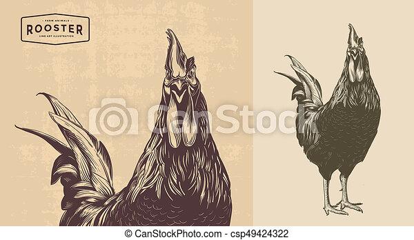 Line Art Rooster : Rooster line art. cock cockerel vintage clip art