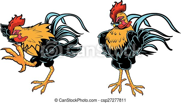 Line Art Rooster : Great rooster design for any cock fight chicken vector clip art
