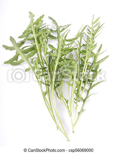 Roquette on white background - csp56069000