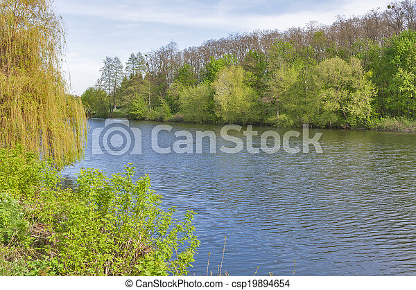 Ros river landscape - csp19894654