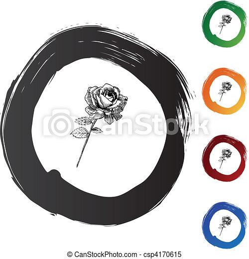 rosa, caule - csp4170615