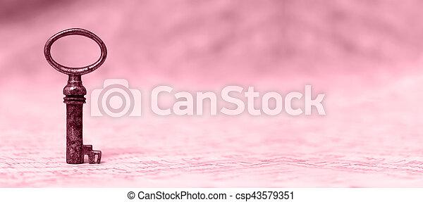 El concepto de solución en rosa - csp43579351