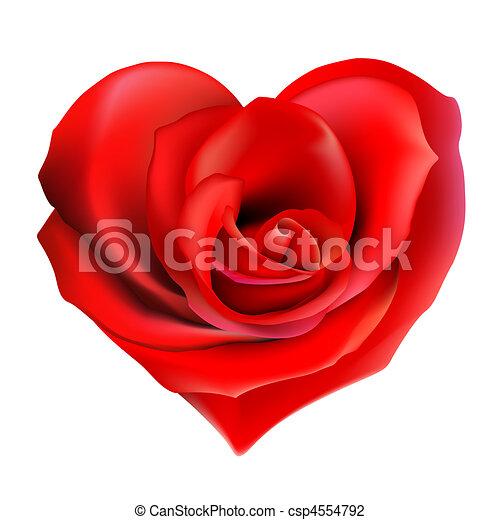 rosa, coração vermelho - csp4554792