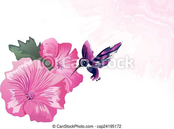 Rosa florece, colibrís. Hermoso, layers., separado, pink ...
