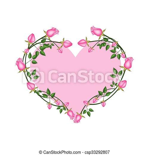 Rosa Forma Corazón Flores Rosas Rosa Corazón Amor Rosas