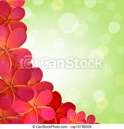rosa, frangipani, cornice, bokeh - csp10746009