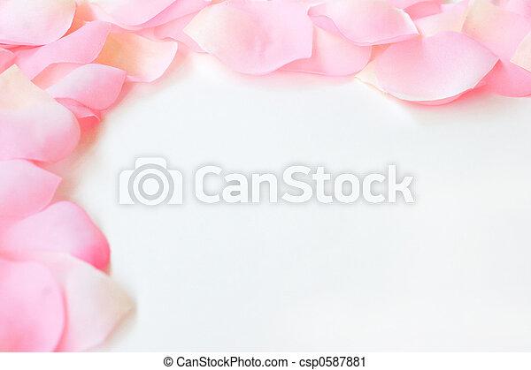 La frontera del pétalo rosa - csp0587881